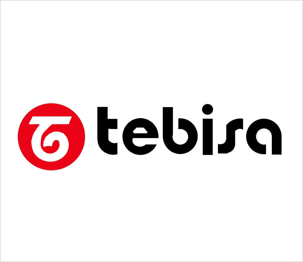 Tebisa