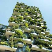 20 MEDIDAS PARA GENERAR HASTA 88.000 EMPLEOS AL AÑO  EN REHABILITACIÓN ENERGÉTICA La alianza Rehabilitar el Futuro, que agrupa a los principales agentes del sector de la eficiencia energética, ha presentado al gobierno  una propuesta en la que recoge 20 medidas para promover la rehabilitación energética de edificios como motor de la recuperación y de la lucha contra el cambio climático. En la actualidad, el 80% de los edificios en España es ineficiente y es responsable del 40% del consumo de energía y de un tercio de las emisiones de CO2. https://rb.gy/xkmbrs